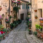 cobbled street and pink flowers in pots